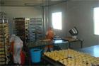 Food Aseptic Workshop Manufacturer